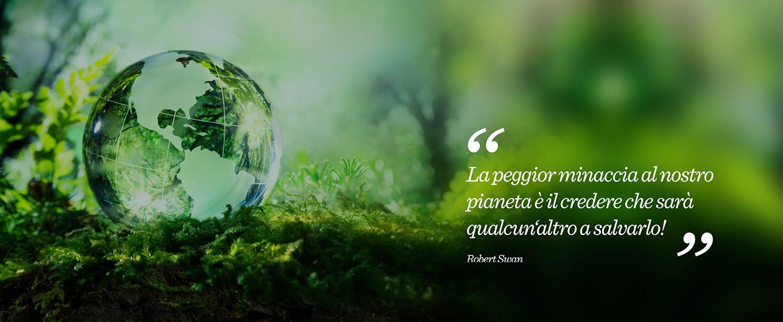 Pallet usati: pianeta verde